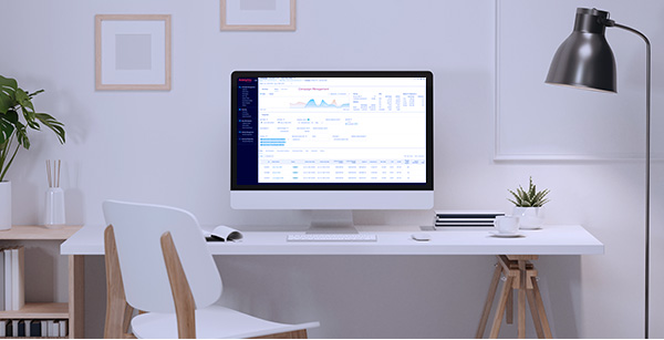 Computer on desk shows digital advertising reports on screen